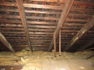 Older roof framing